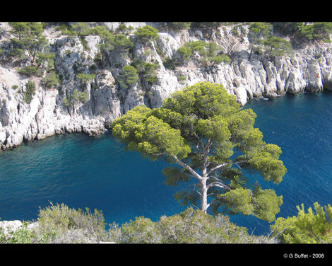 Calanques_cassis_mer_turquo