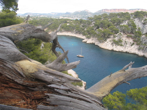 Calanques_cassis_port_miou