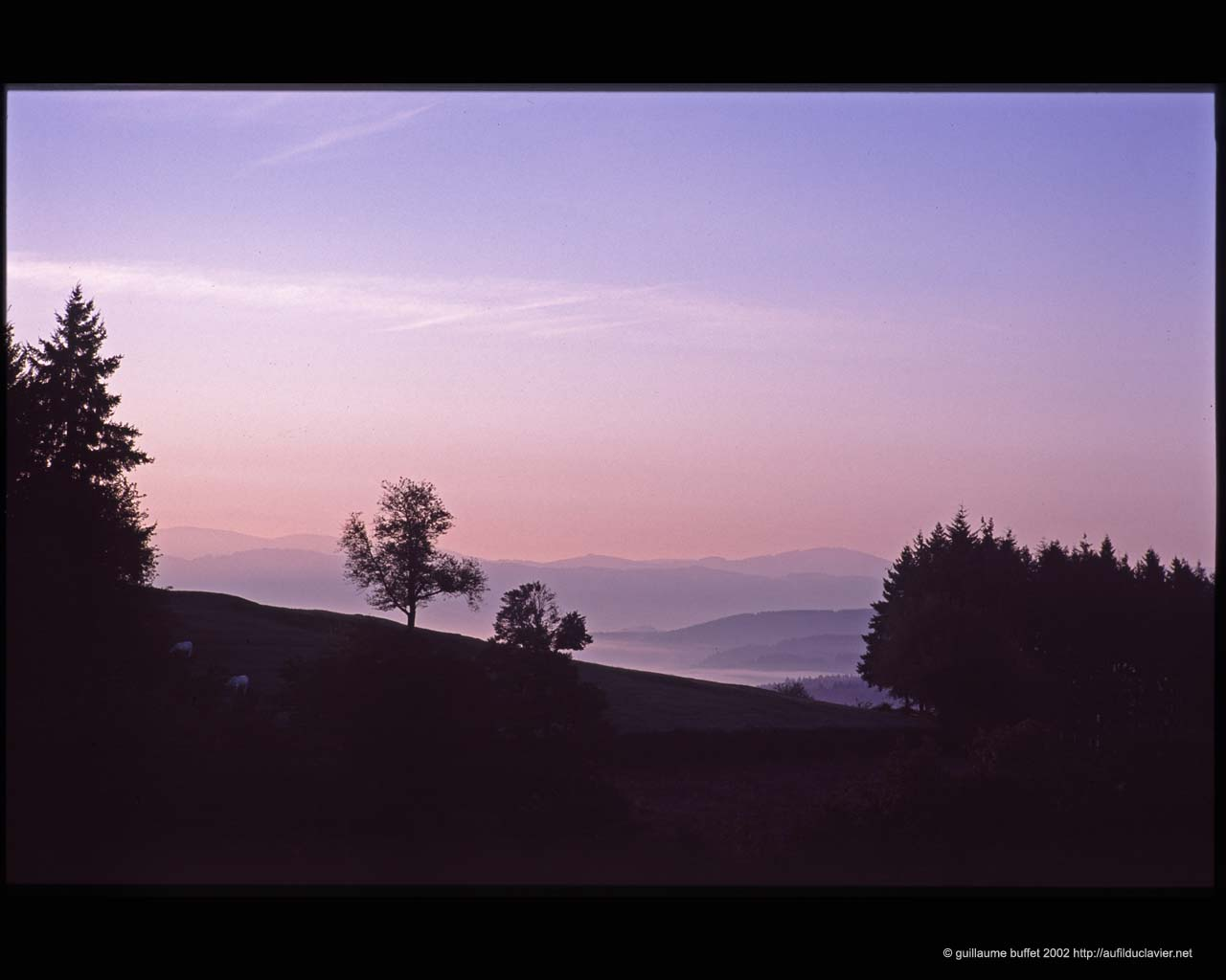 Trivy_lever_soleil